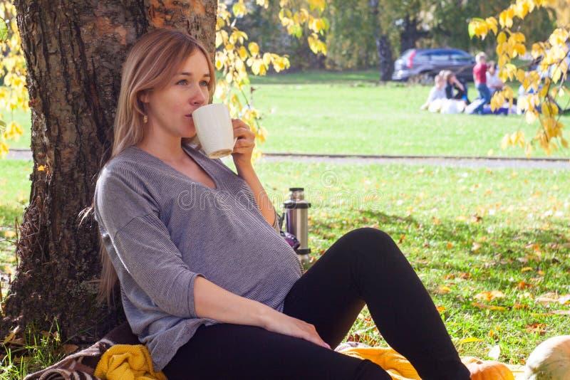 Schöne Reste der schwangeren Frau im Park Sie sitzt nahe dem Baum und Getränktee Das Konzept des Familienglückes stockfotografie