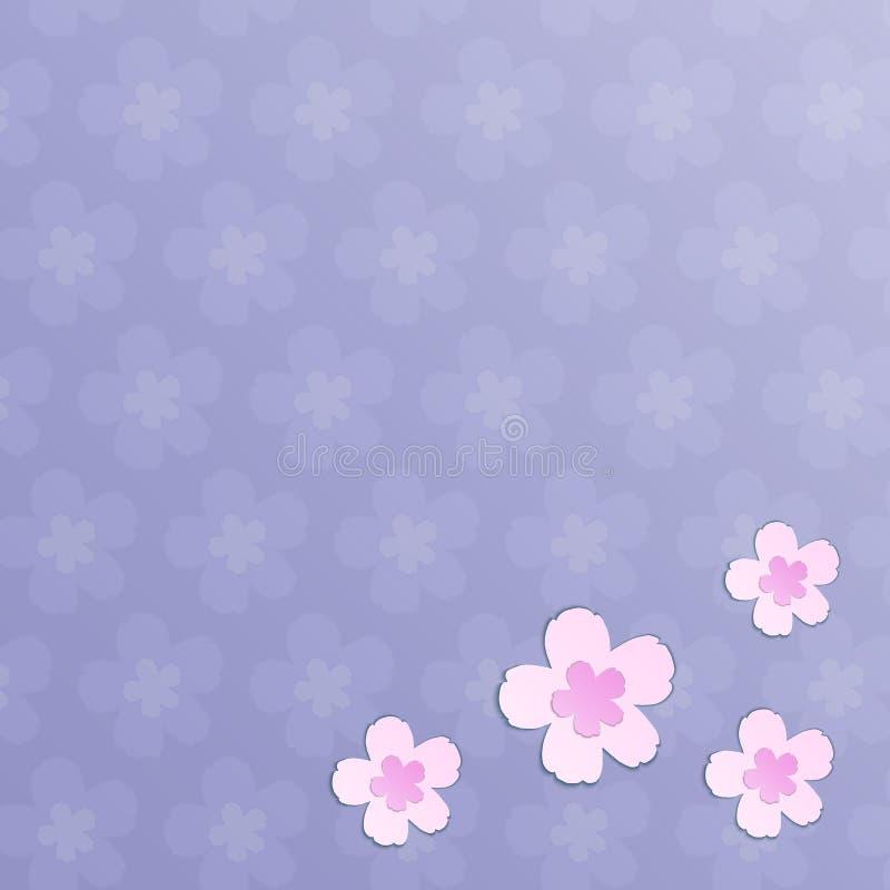 Schöne rosa blühende Kirschblüte-Blumen auf purpurrotem Hintergrund lizenzfreie abbildung