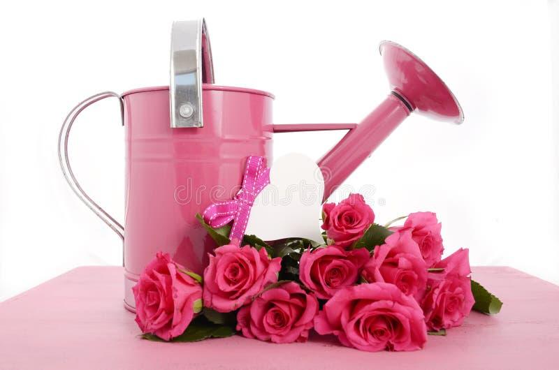 Schöne rosa Frühlingszeitgießkanne lizenzfreie stockbilder