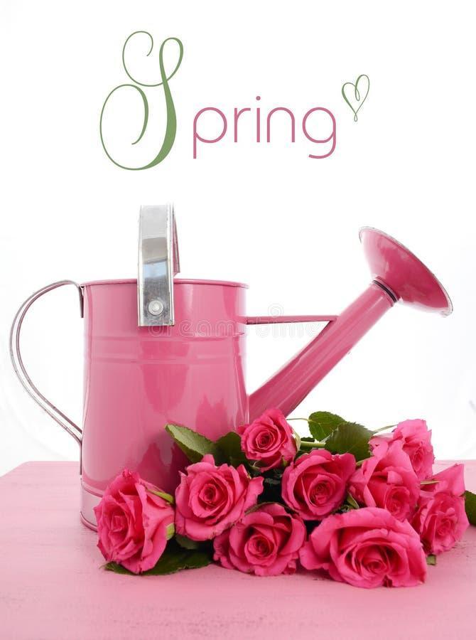 Schöne rosa Frühlingszeitgießkanne stockfotografie