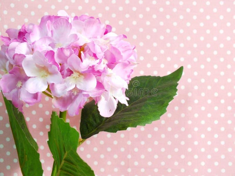 Schöne rosa Hortensie des Blumenstraußes der künstlichen Blumen auf rosa Tupfenhintergrund stockfoto