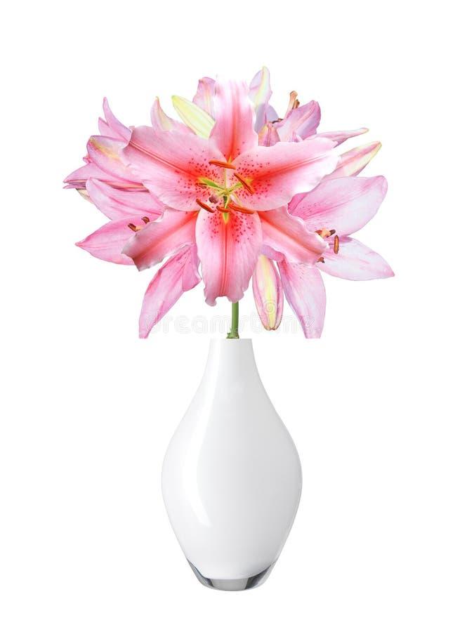 Schöne Rosa Lilie Im Vase Lokalisiert Auf Weiß Stockbild - Bild von ...