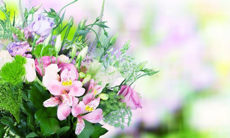 Schöne rosa Rosen auf unscharfem Hintergrund lizenzfreies stockfoto