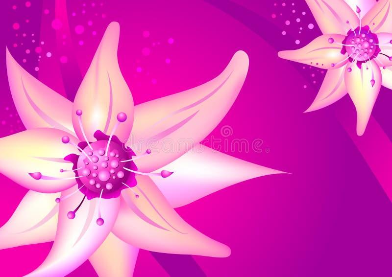 Schöne rosafarbene Blume stockbilder