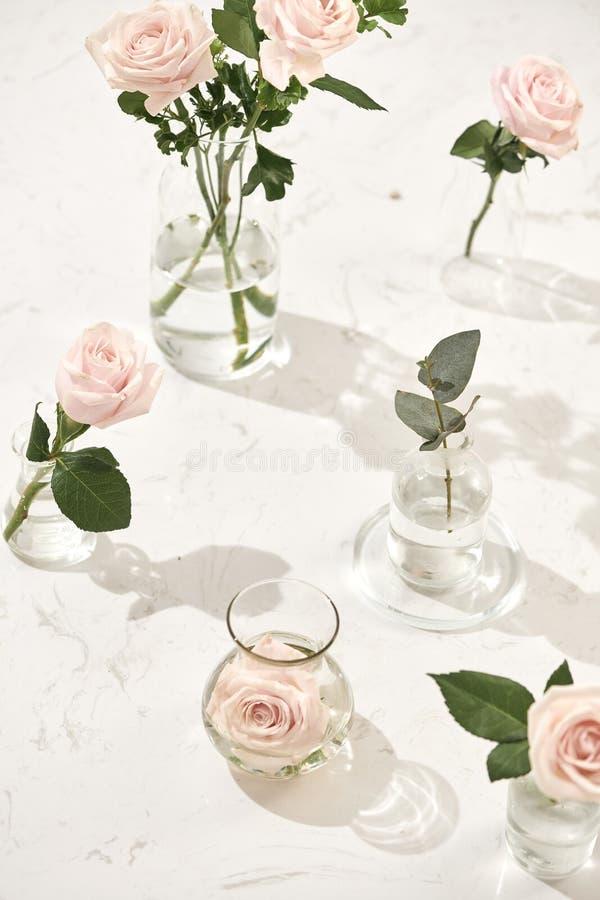 Schöne rosafarbene Blumen im Vase auf rosa Hintergrund stockfotografie