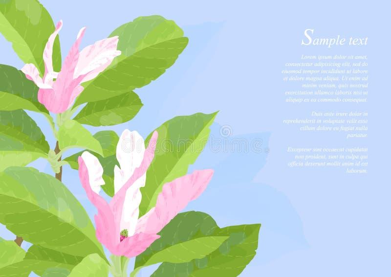 Schöne rosafarbene Magnolie-Blumen vektor abbildung