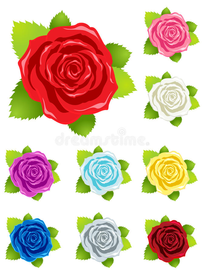 Schöne Roseblumen stock abbildung