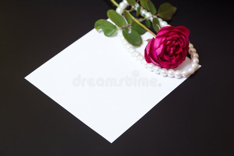 Schöne Rotrose mit Perlen auf leerem weißem Blattpapier lizenzfreie stockfotografie