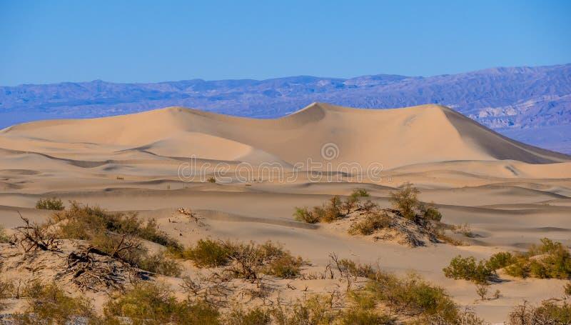 Schöne Süßhülsenbaum-Sanddünen bei Death Valley Kalifornien stockfotos