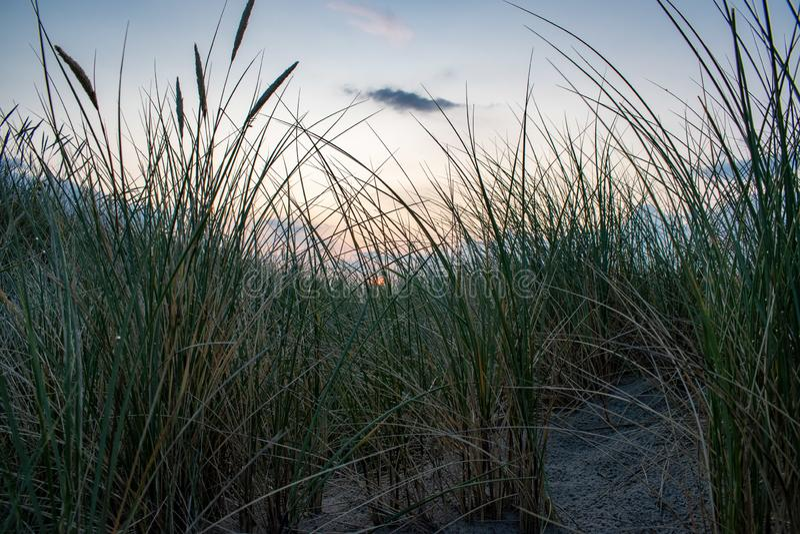 Schöne Sanddünen gestalten auf einem erstaunlichen Strand landschaftlich Nette Farbe auf dem Himmel vom goldenen Stundenlicht lizenzfreie stockfotografie