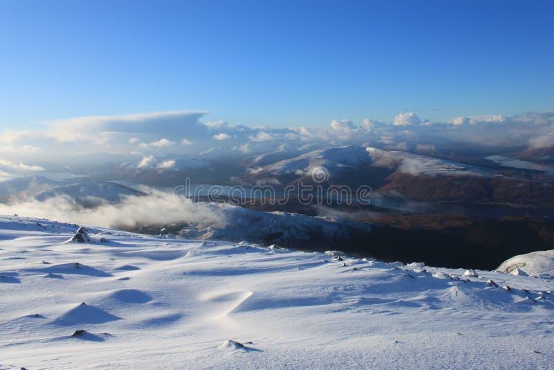 Schöne schottische Hochländer lizenzfreie stockbilder