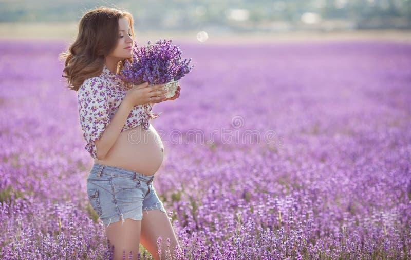 Schöne schwangere Frau auf dem Lavendelgebiet lizenzfreie stockfotografie