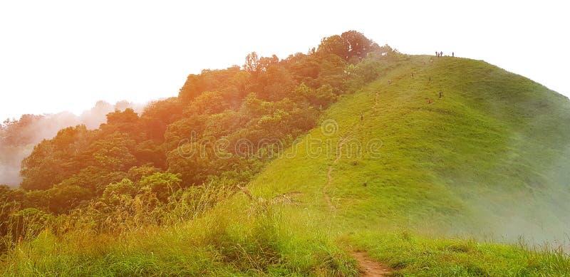 Schöne Sicht auf die grüne Berglandschaft mit orangefarbenem Sonnenlicht, Nebel und Wolken in tiefem Wald lizenzfreies stockfoto