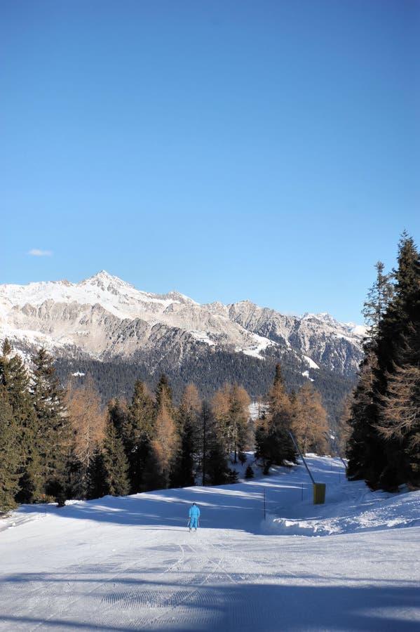 Schöne Skisteigungen in den Dolomit - Skigebiet Skigebiet CampiglioDolomiti Brenta, Val Di Colle, Val Rendena lizenzfreies stockfoto