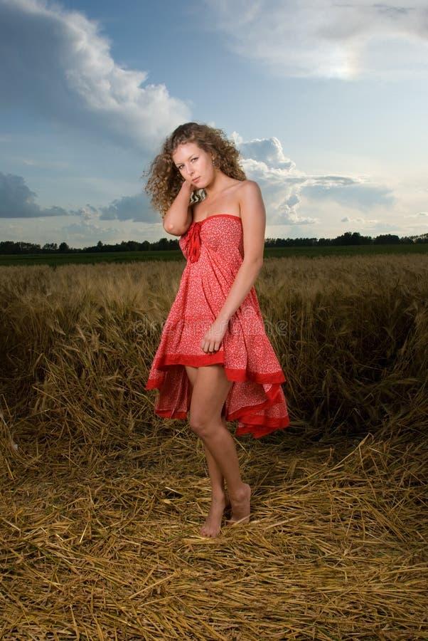 Schöne slawische Mädchenhaltung auf dem Weizengebiet lizenzfreie stockfotografie