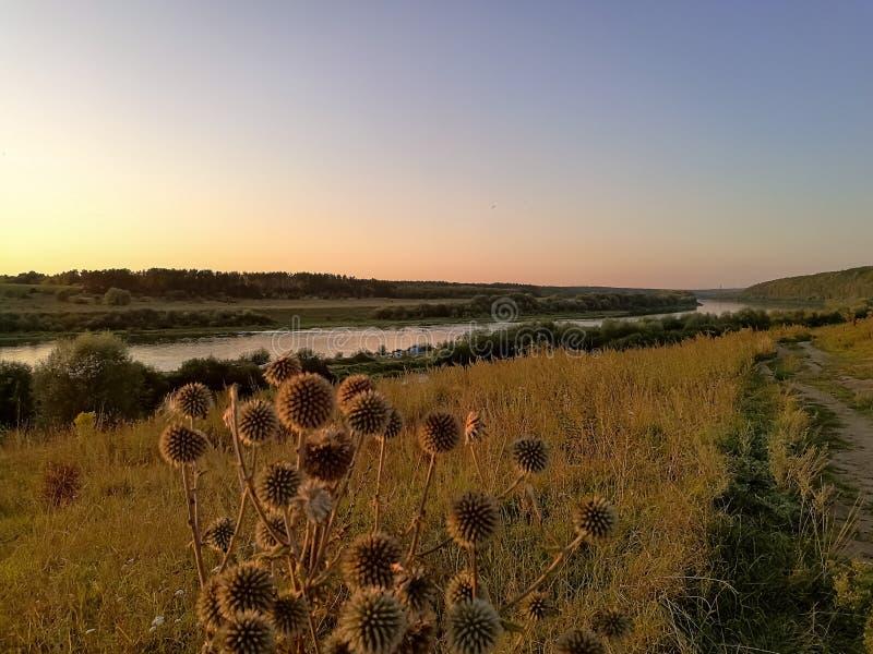 Schöne Sommerlandschaft auf einem Fluss Volga stockbilder