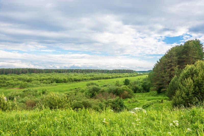 Schöne Sommerlandschaft in der Kostroma-Region stockbilder