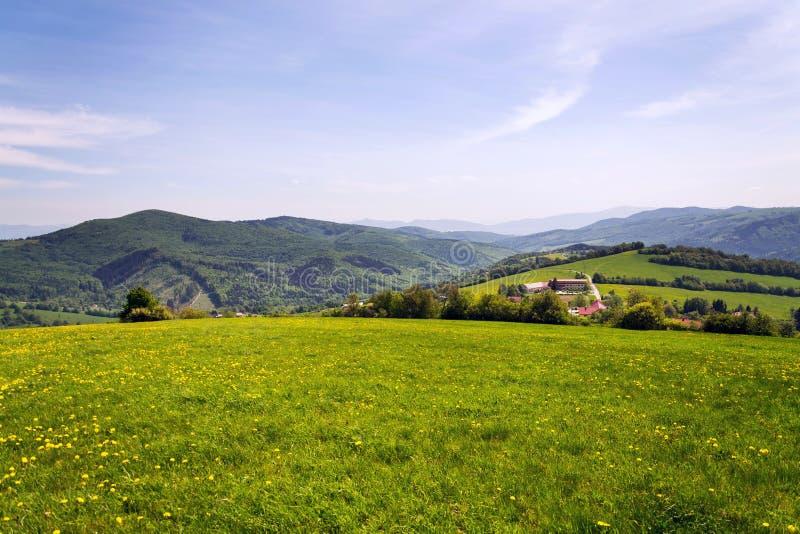 Schöne Sommerlandschaft mit blühendem gelbem Löwenzahn um Zitkova-Dorf, weiße Karpaten im Hintergrund stockbilder
