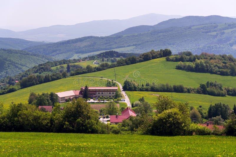 Schöne Sommerlandschaft mit blühendem gelbem Löwenzahn um Zitkova-Dorf, weiße Karpaten im Hintergrund lizenzfreie stockfotografie