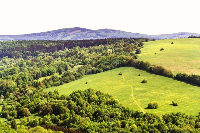 Schöne Sommerlandschaft mit buntem Mischwald um Zitkova-Dorf, weiße Karpaten, hölzerne Verschiedenartigkeit stockfotografie