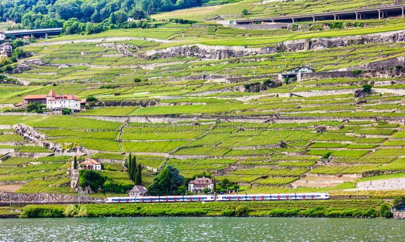 Schöne Sommerlandschaft von Genfersee-, Lavaux-Weinberg Terrassen und Alpen mit den Zügen, die vorbei, Schweizer Riviera, die Sch lizenzfreies stockfoto