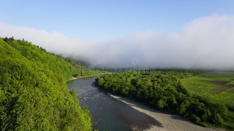 Schöne sonnige Tallandschaft mit breitem Gebirgsbach zwischen den grünen Bäumen mit klarem blauem Himmel stockbild