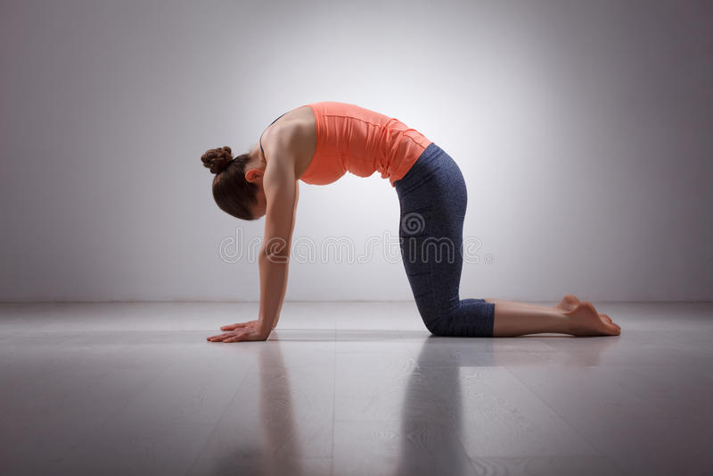 Schöne sportliche Sitz yogini Frau übt Yoga lizenzfreies stockbild