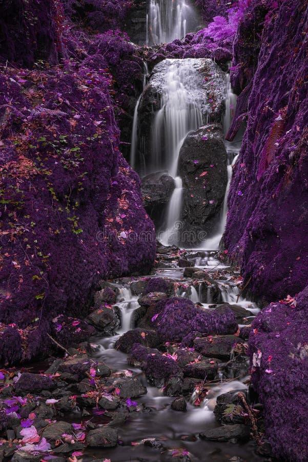 Schöne surreale alternative Farbhoher Wasserfall, der vorbei fließt stockfoto