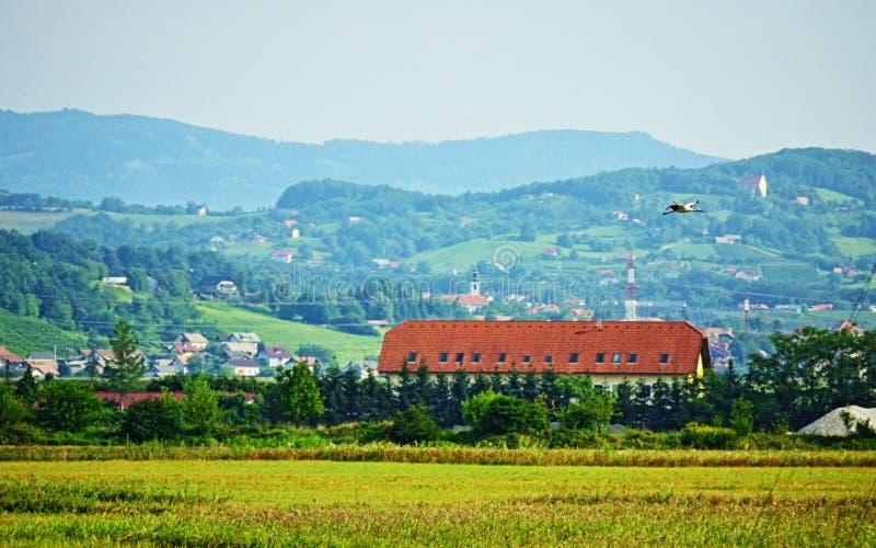 Schöne szenische Ansicht und Storch, die Slowenien Europa fliegt stockbild
