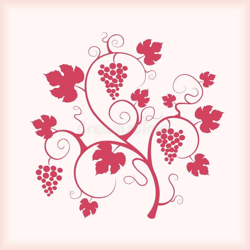 Schöne Traubenrebe mit Feldhintergrund. lizenzfreie abbildung