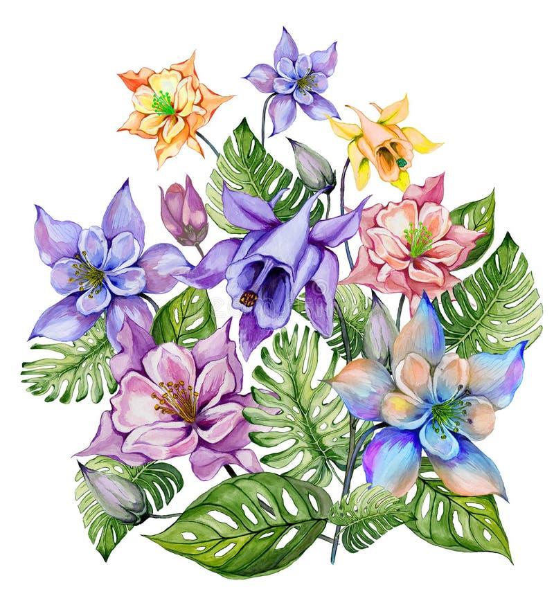 Schöne tropische Blumen buntes aquilegia mit den Knospen und monstera Blättern Bündel Akeleiblumen und exotische Blätter lizenzfreie abbildung