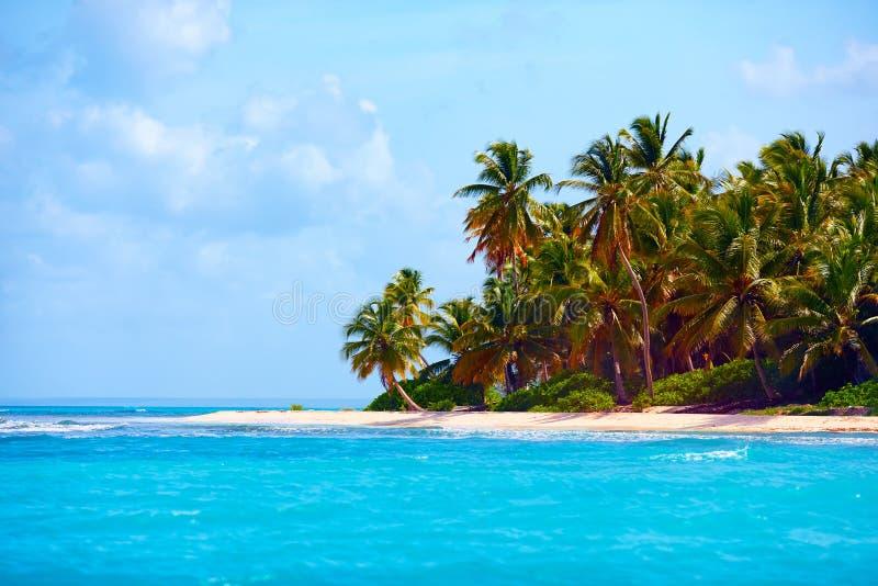 Schöne tropische Küste von Karibischen Meeren, Saona-Insel, Dominikanische Republik stockfotografie