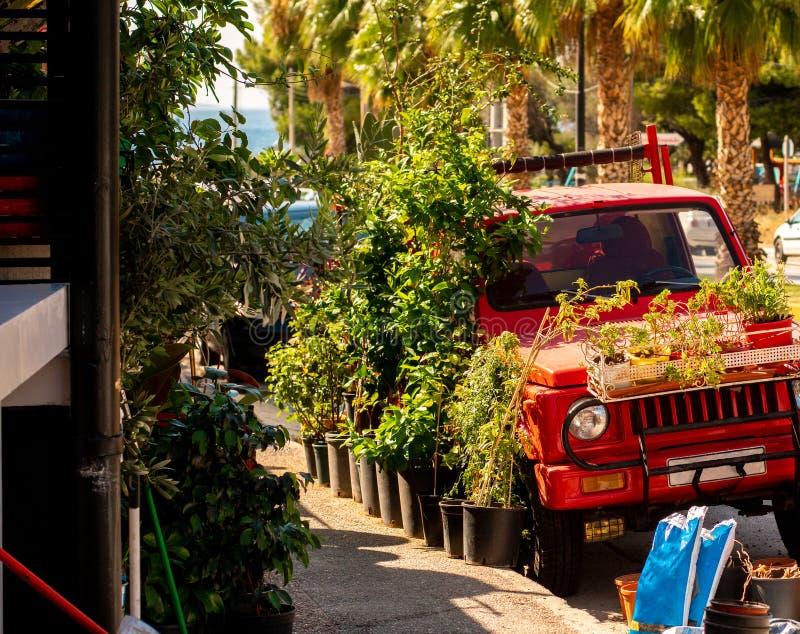 Schöne tropische Stadtstraße stockfoto