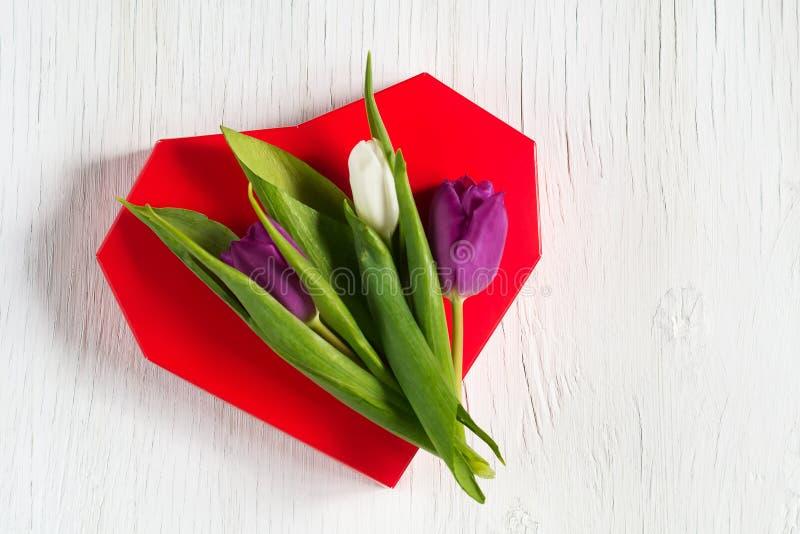 Schöne Tulpen auf einem roten Herzen Weißer hölzerner Hintergrund Mutter`s Tag Glücklicher Frauen ` s Tag stockfotografie