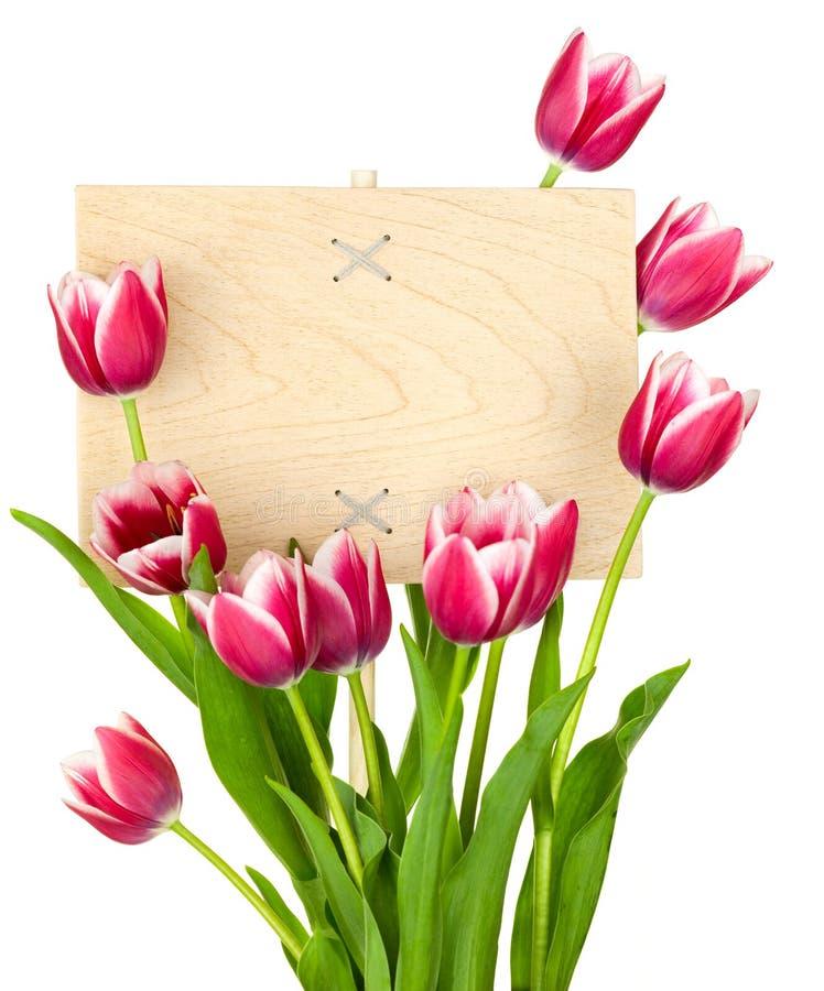 Schöne Tulpen und leeres Zeichen für Meldung lizenzfreies stockbild