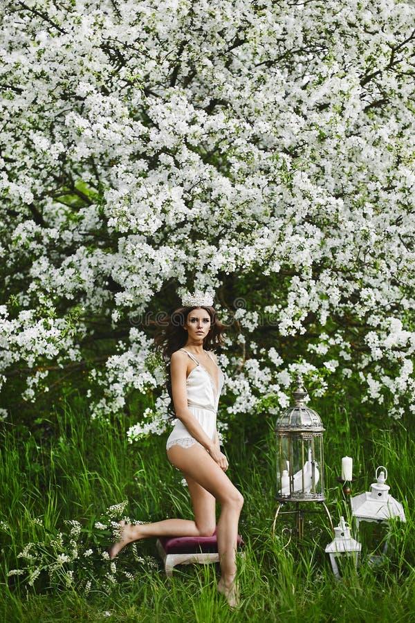 Schöne und sexy junge vorbildliche Frau mit perfektem Körper in der stilvollen Wäsche mit der Krone auf ihrem Kopf, der unter auf lizenzfreie stockfotos