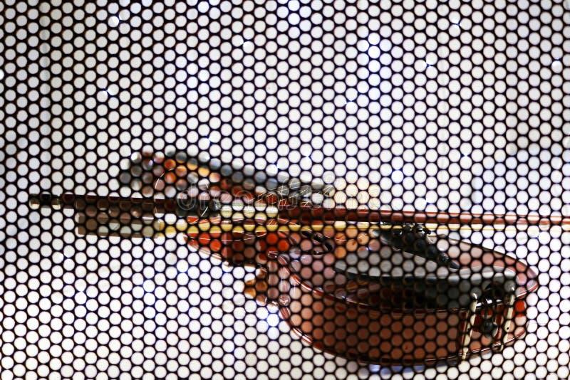 Schöne Violine mit Maschenhintergrund lizenzfreie stockbilder