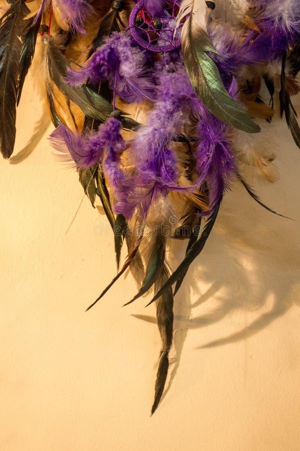 Schöne Vogelfedern für dekorative Ziele stockfoto