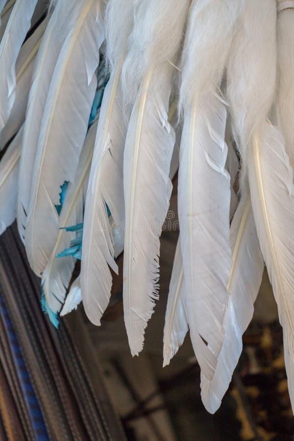 Schöne Vogelfedern für dekorative Ziele stockbilder