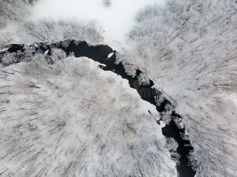 Schöne Vogelperspektive des Schnees umfasste Kiefernwälder und eine Flusswicklung unter Bäumen r Winter stockfotografie