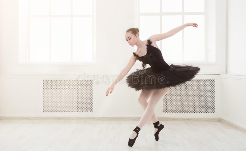 Schöne würdevolle Ballerina im Kleid des schwarzen Schwans stockfotos