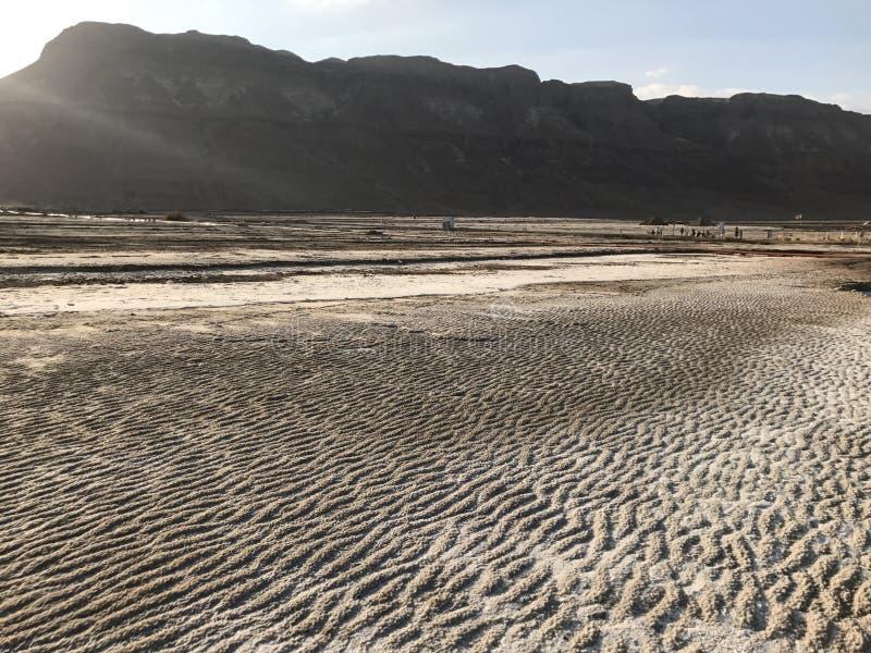 Schöne Wüste stockfoto