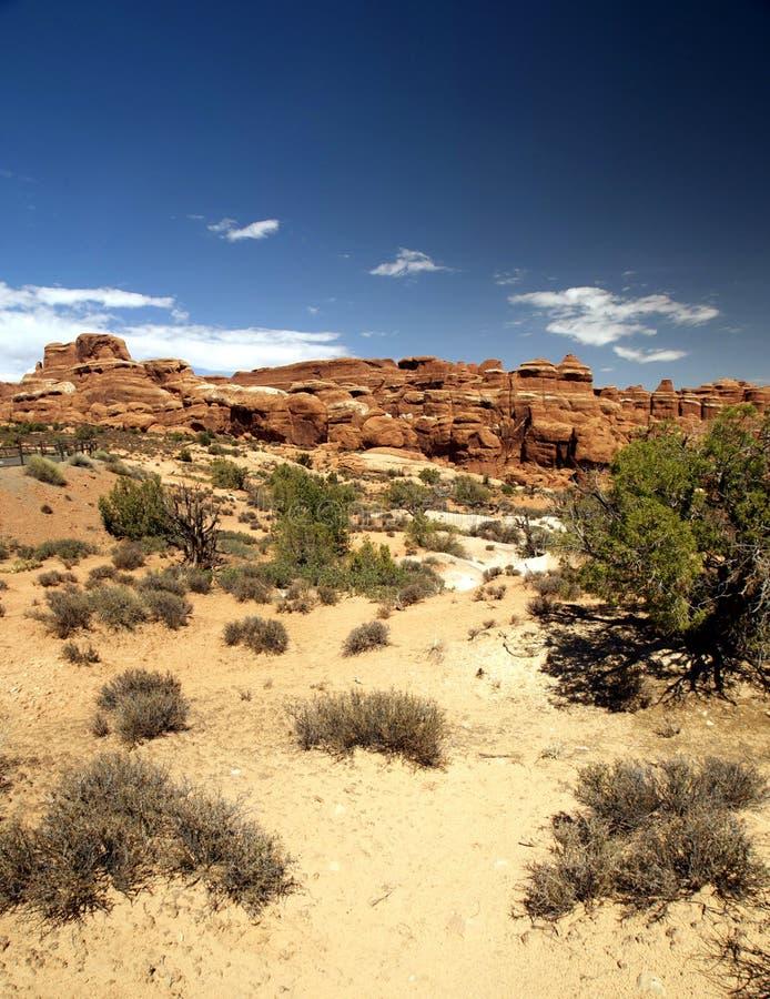 Schöne Wüsten-Szenen-und Felsen-Anordnungen stockbild