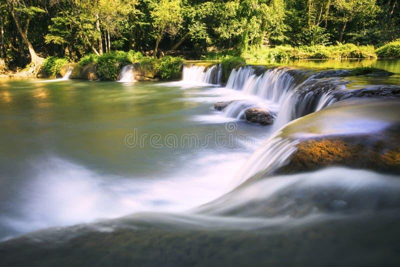 Schöne Wasserfälle im reinen tiefen Wald nationalen PAs Thailands stockbilder