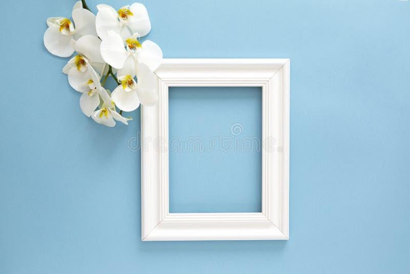 Schöne weiße Orchidee Phalaenopsisblumen, hölzerner weißer Fotorahmen auf blauem Hintergrund Draufsicht, flache Lage lizenzfreie stockfotos