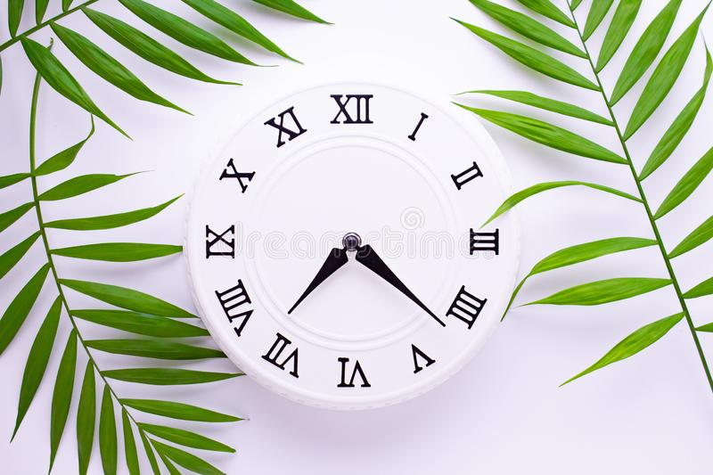Sch?ne wei?e Uhr mit Bl?ttern der tropischen Palme Das Konzept der Zeit Feiertagsdekorationsbilder lizenzfreies stockbild