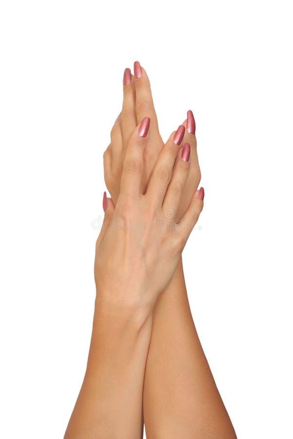Schöne weibliche Hände. lizenzfreie stockbilder