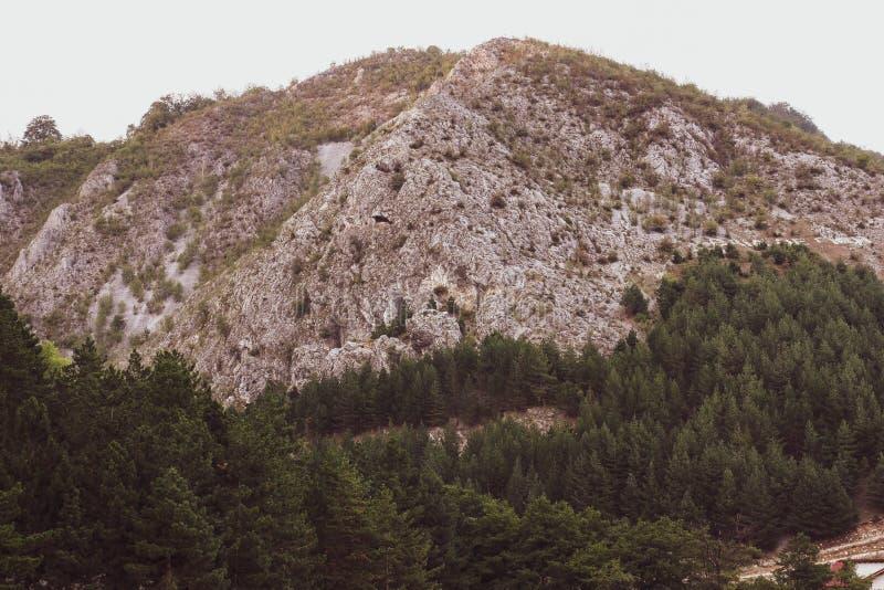 Schöne Weinleseansicht eines Berges mit Felsen und einem grünen Wald lizenzfreie stockbilder