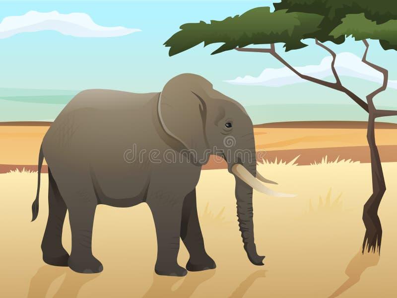 Schöne wilde afrikanische Tierillustration Großer Elefant, der auf dem Gras mit Savannen- und Baumhintergrund steht stock abbildung