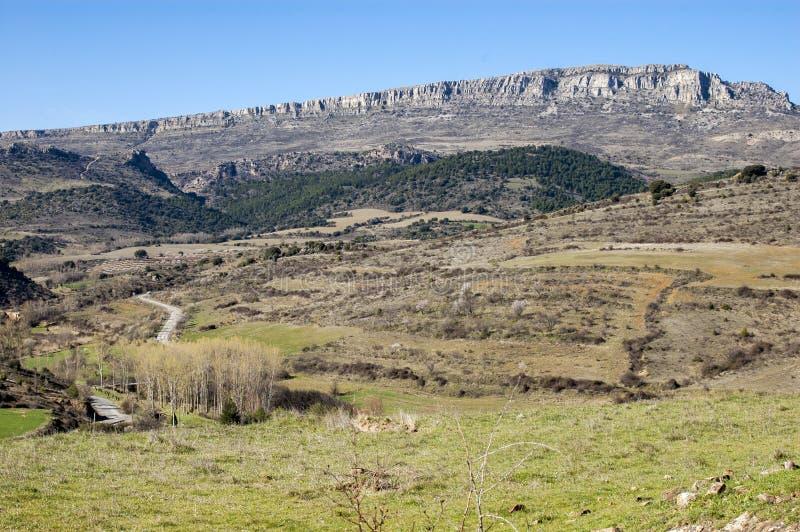 Schöne wilde Landschaft mit einigen Hügeln lizenzfreies stockfoto